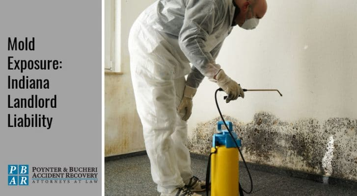black mold and landlord liability